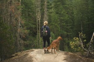 woman and dog hiking in the wilderness