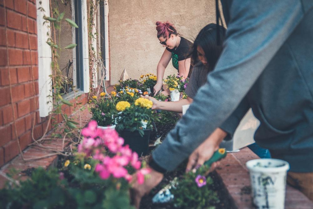 Women working hard in the garden
